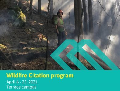 Wildfire training TERR 2021- feature